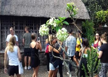 Workshop and Excursion Batch 2